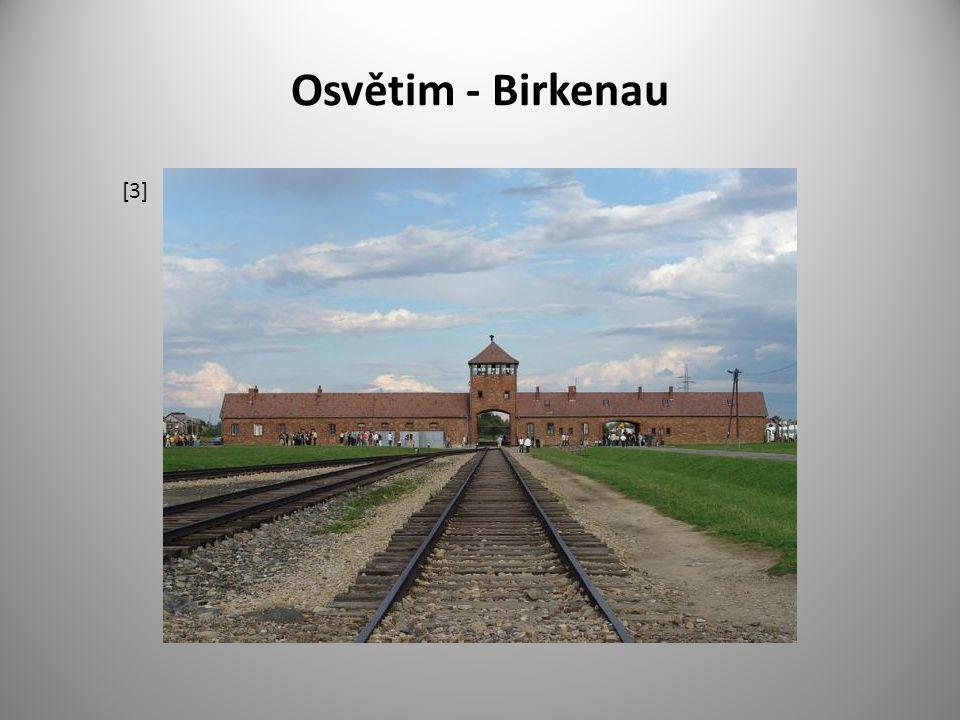 Osvětim - Birkenau [3]